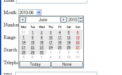 New HTML5 Month Input